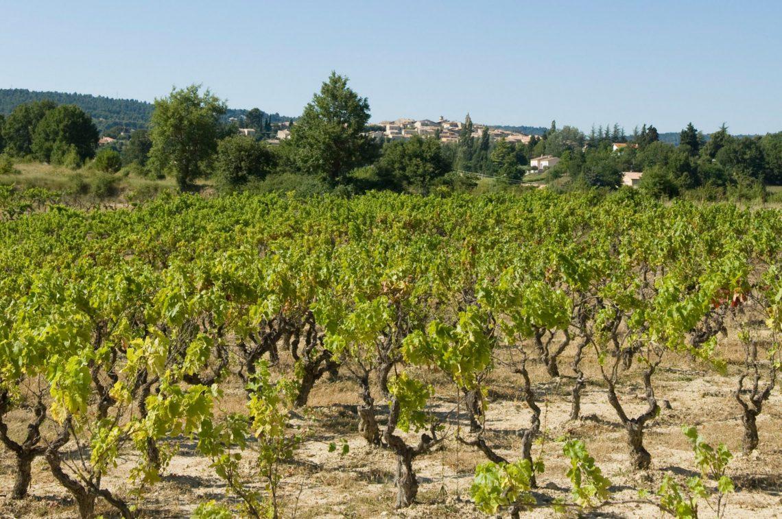 I Coteaux (vini) di Pierrevert AOC ©M. Boutin