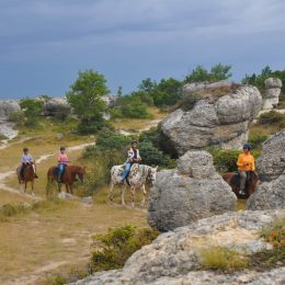 cheval dans les Mourres ©Centre de Randonnée Equestre JANSSAUD