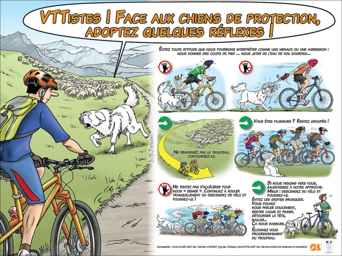 Comportamento raccomandato se si è in bicicletta o in mountain-bike