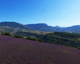 paysage de l'UNESCO Géoparc de Haute-Provence ©UNESCO Geoparc
