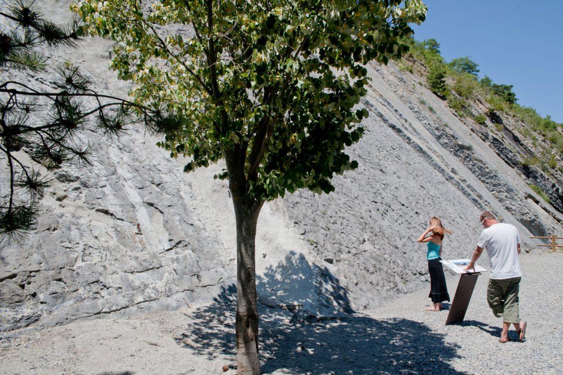 La lastra di ammoniti di Digne-les-Bains nelle Riserva naturale nazionale geologica di Haute-Provence ©Mir