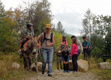 Facendo un'escursione con un asino